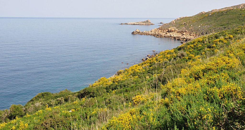 Kiki vous invite à Bejaia découvrir ses magnifiques plages et ses nombreux sites