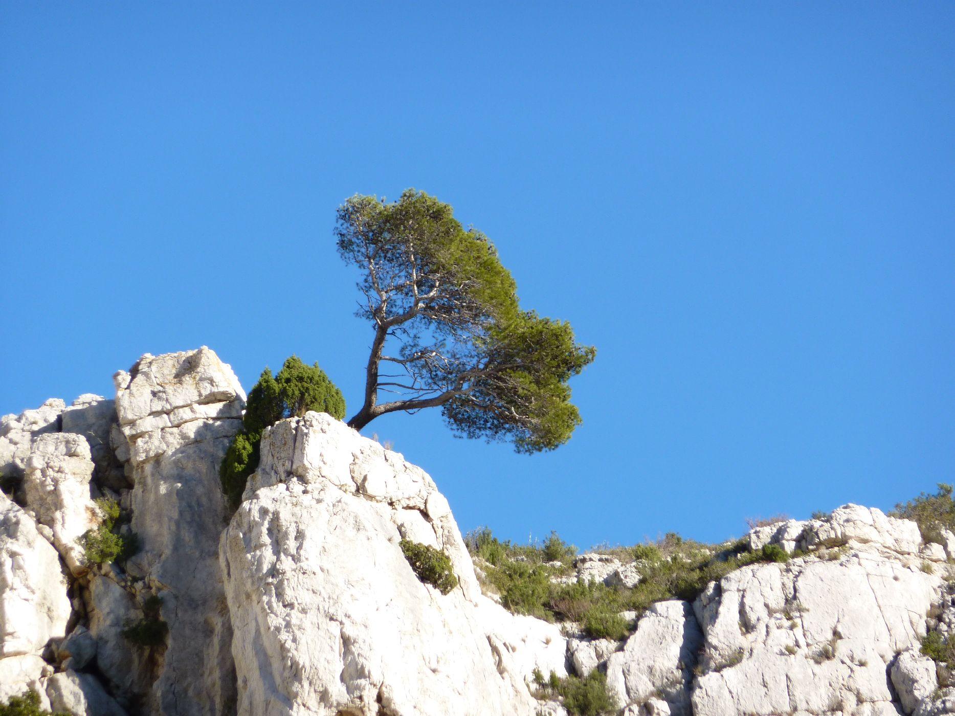 weekend-velo-triathlon-Provence