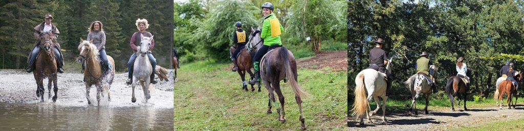 randonnée-equestre-cheval-mag