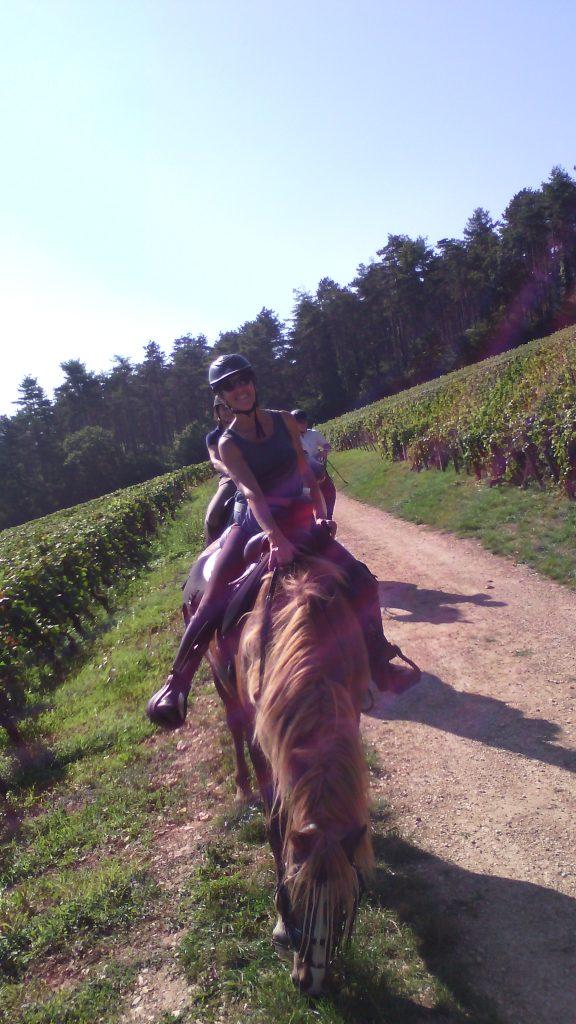 Weekend Découverte de la Côte d'Or à cheval, mais aussi à pied ou à vélo avec une approche oenologique