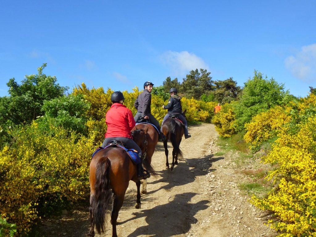 weekend-randonnee-equestre-rhone-alpes-ardeche