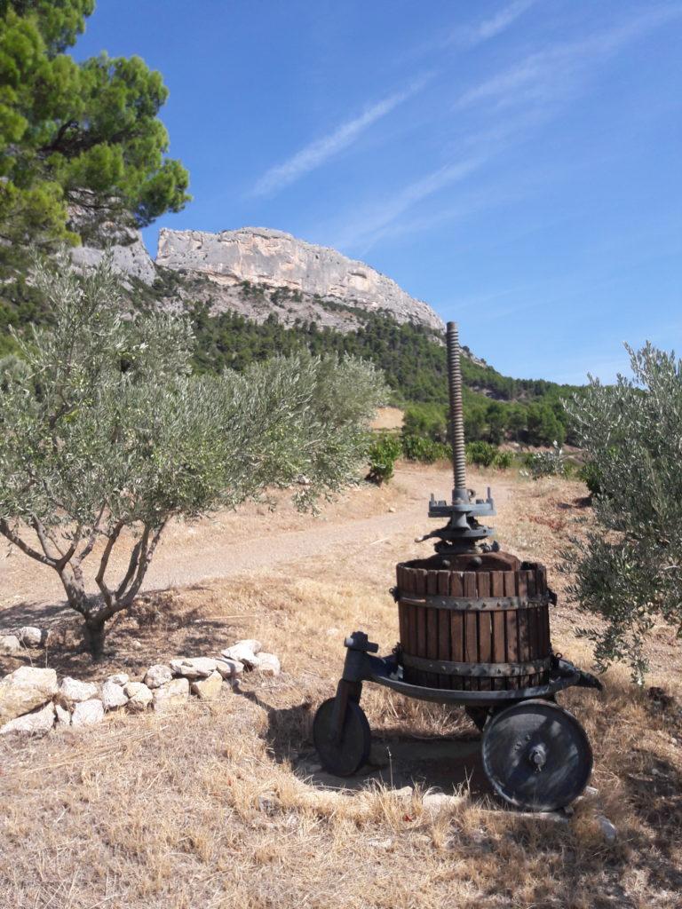 Weekend Petit déjeuner vigneron au pied du Ventoux