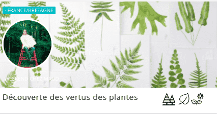 weekend-decouverte-des-plantes-weekend-pour-se-ressourcer