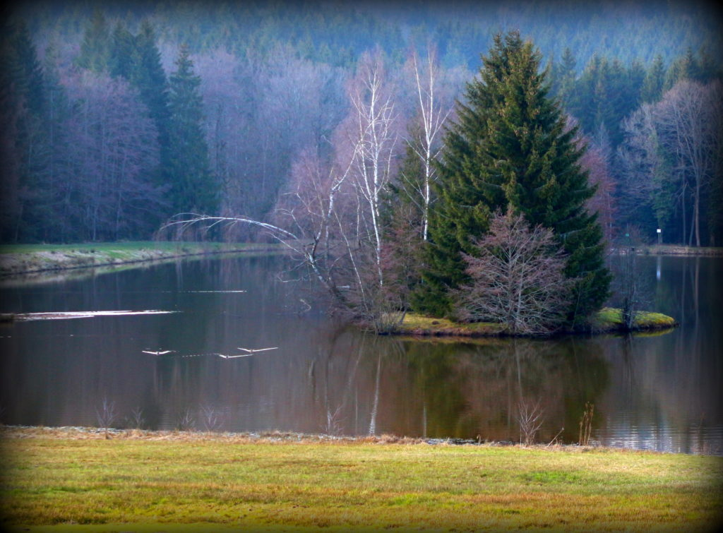 Weekend L'Alsace, culturelle, naturelle et musicale