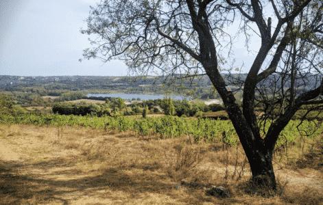 weekend-randonnee-lyon-chassagny-rando-sans-voiture