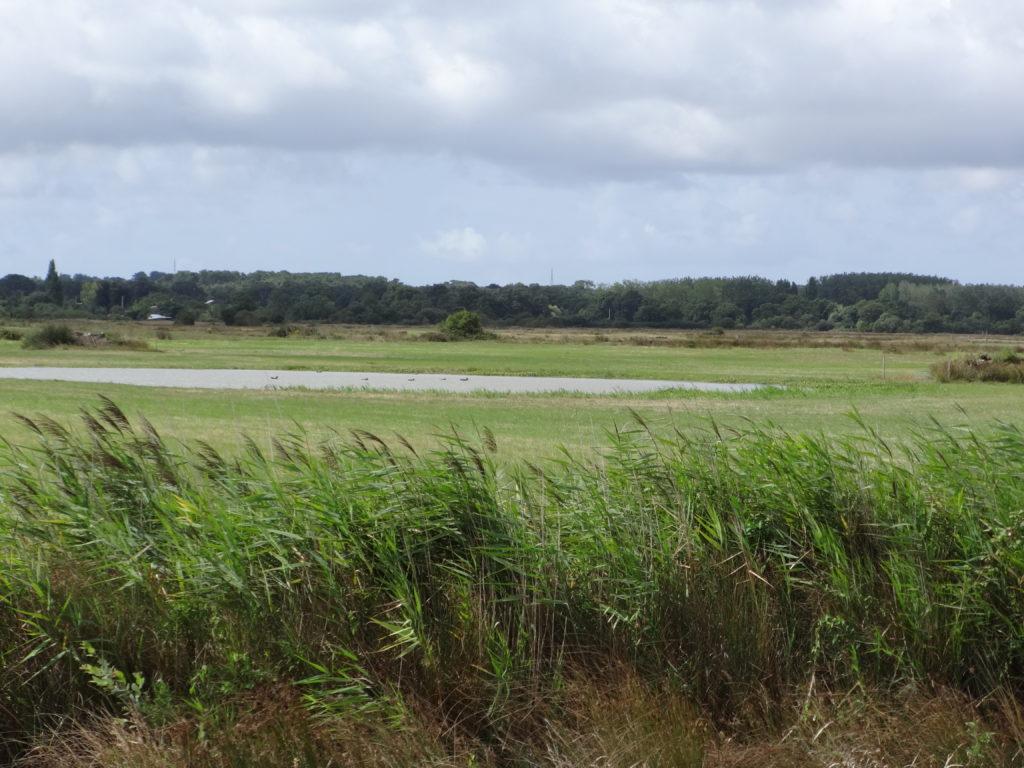Weekend Découverte de la Vendée