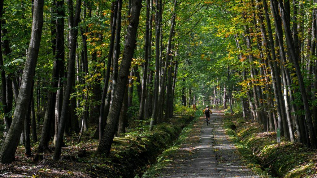 Weekend Randonnée pédestre ou VTT en Haute Saône