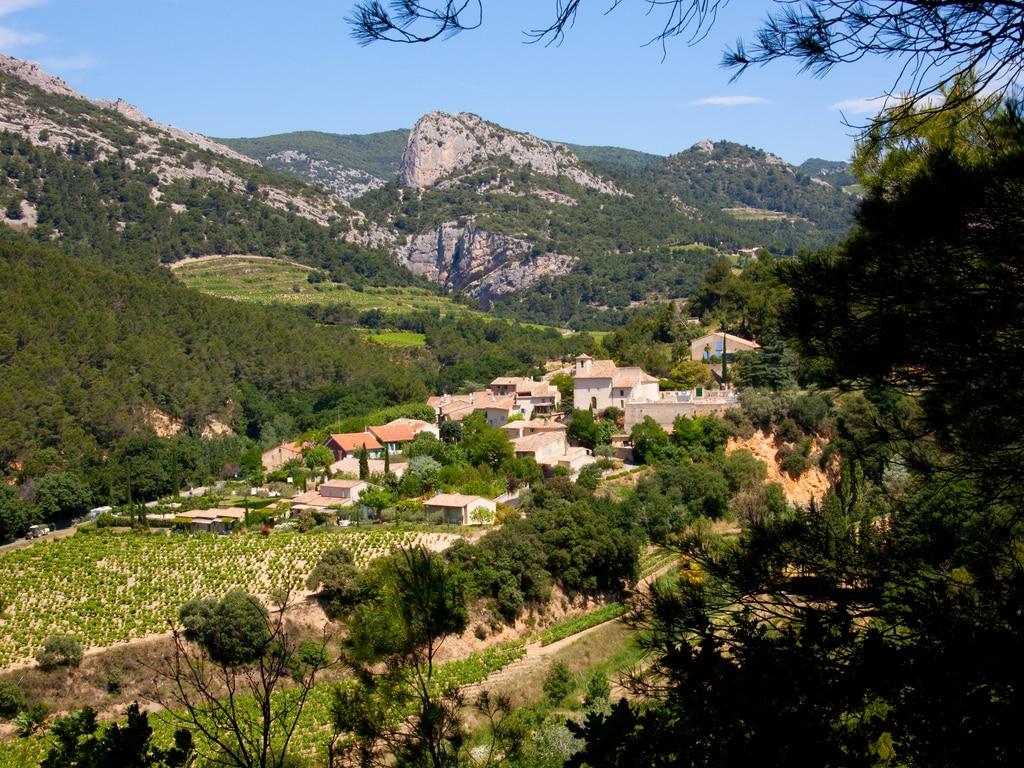 dégustation de vin en Vaucluse