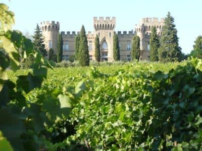 Séjour oenologique dans la région d'Avignon