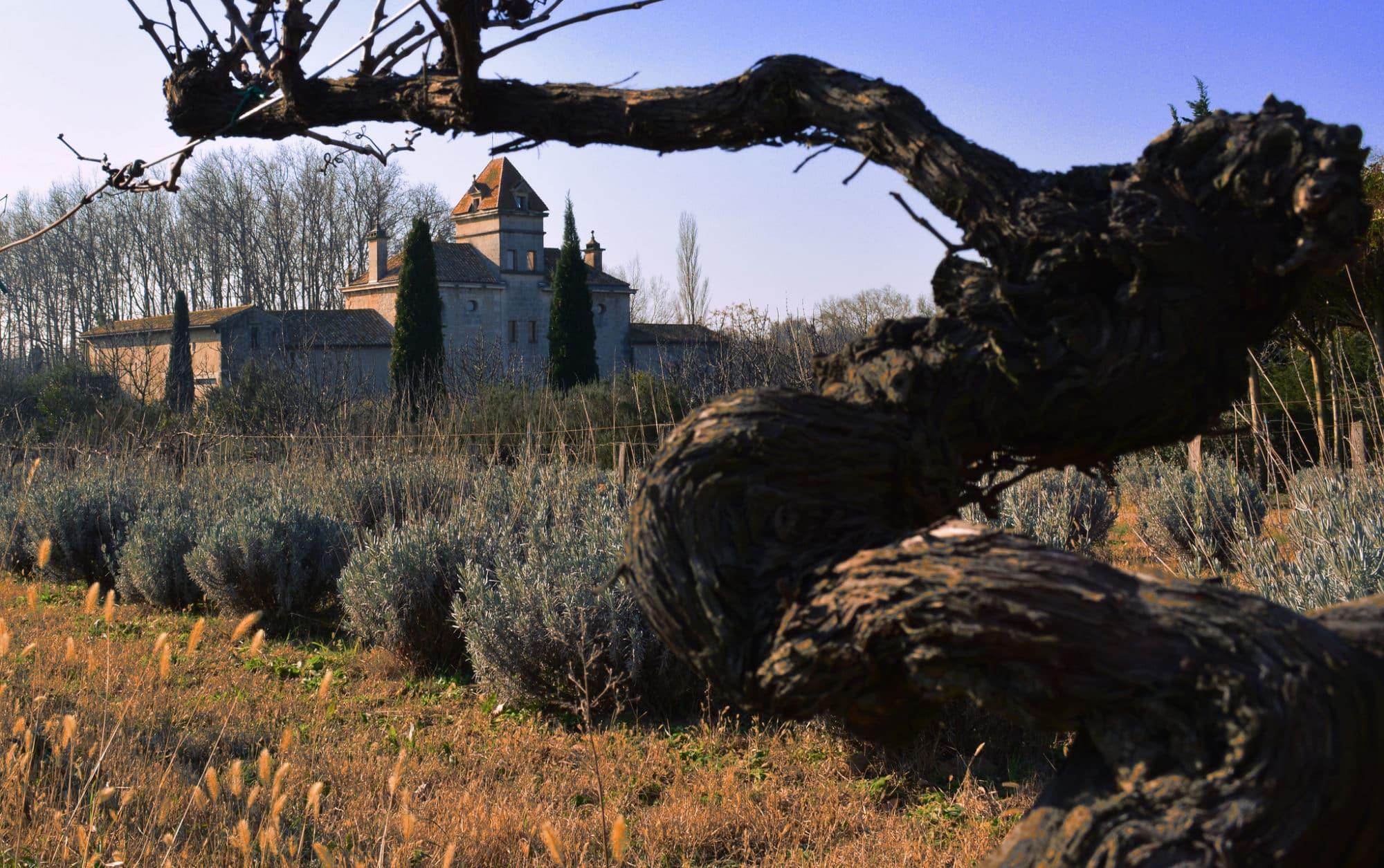 Château d'Aramon