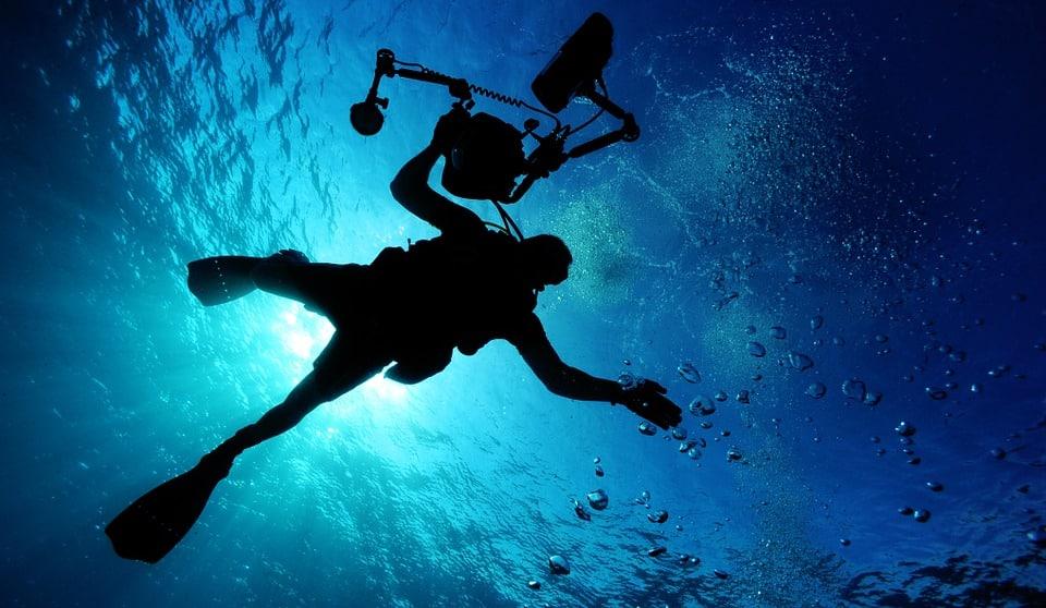 La plongée à Hawaï