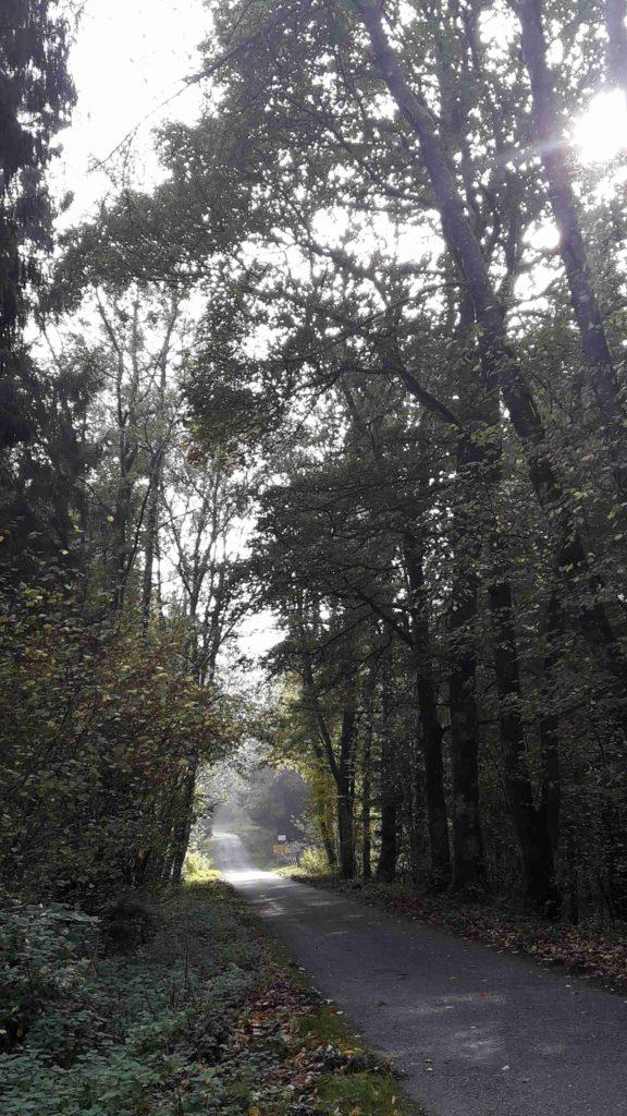 Weekend Pour un weekend de routes sinueuses