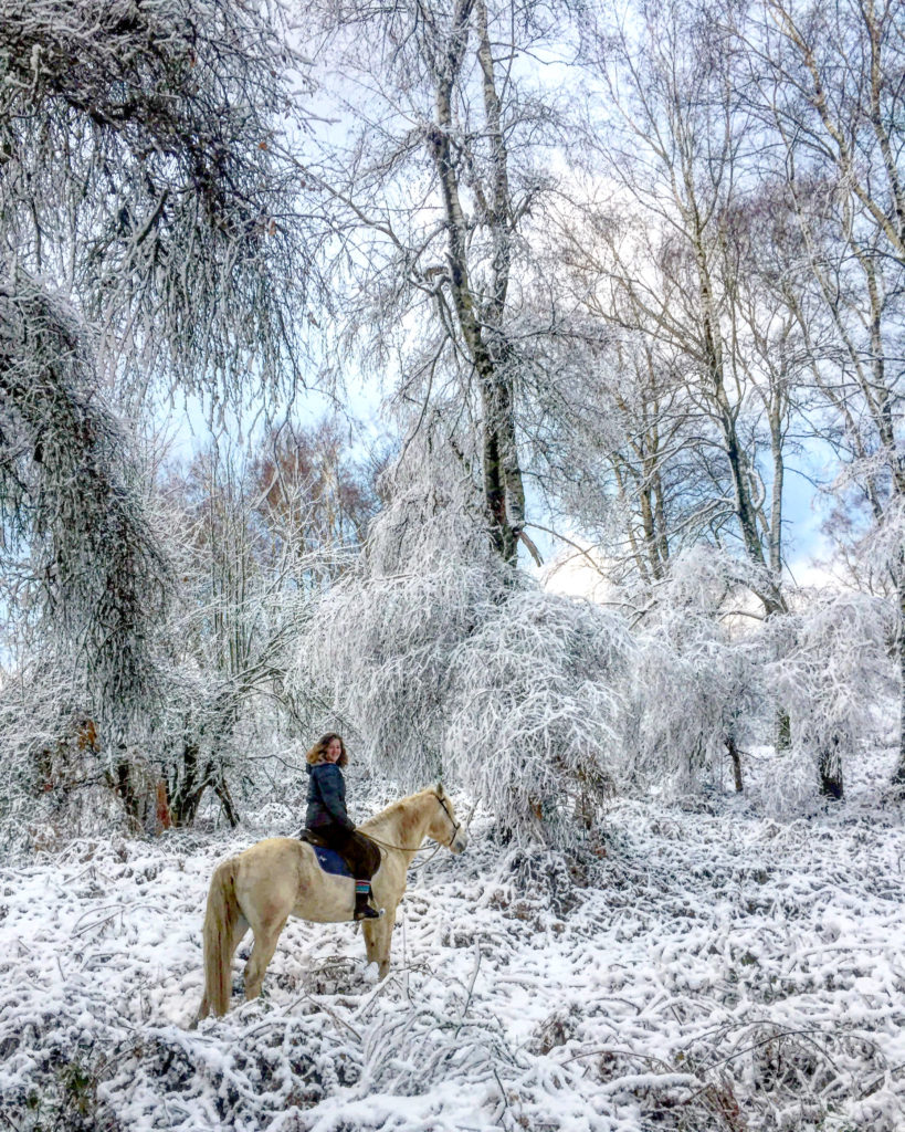 Weekend Andréa vous accueille vous et votre cheval dans l'Ariège