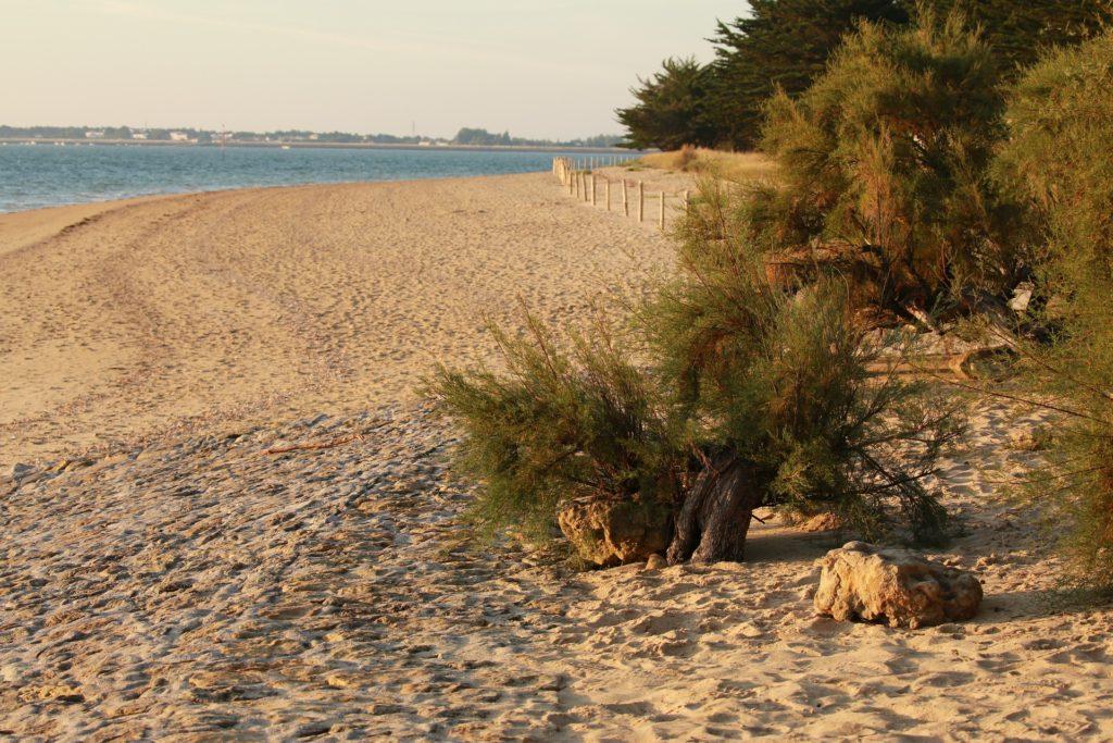 Weekend Céline vous fait découvrir la côte Vendéenne