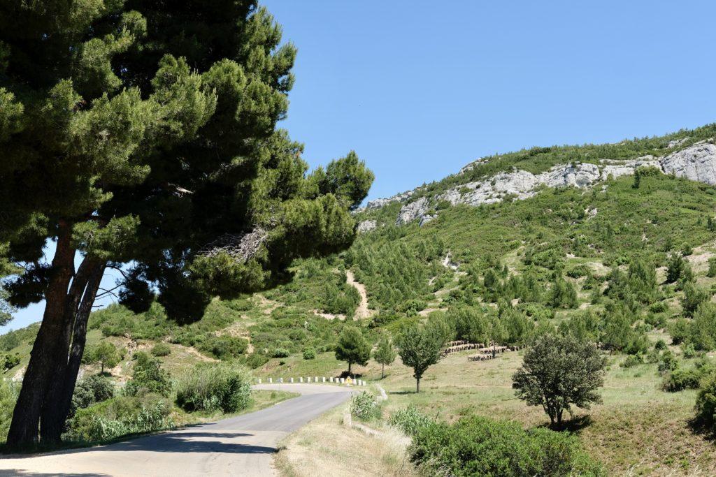 Weekend Balade à moto dans les Alpilles et le Lubéron